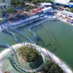 SeaWorld San Antonio's Wave Breaker  Roller Coaster Opens Up June 16th