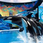 SeaWorld Orlando Announces Plans To Be Re-Opening Up On June 11 Before Walt Disney World's Plans